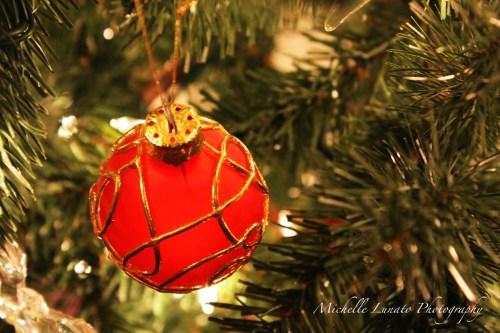 CHRISTMAS055 copy