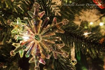 CHRISTMAS058 copy