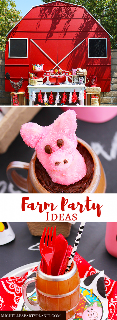 Farm Party Ideas