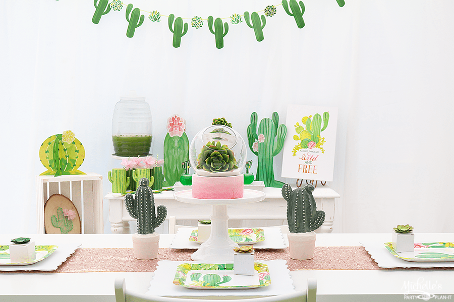 wild and free cactus party ideas michelle 39 s party plan it. Black Bedroom Furniture Sets. Home Design Ideas