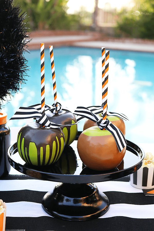 Black Cat Halloween Party Candy Apples