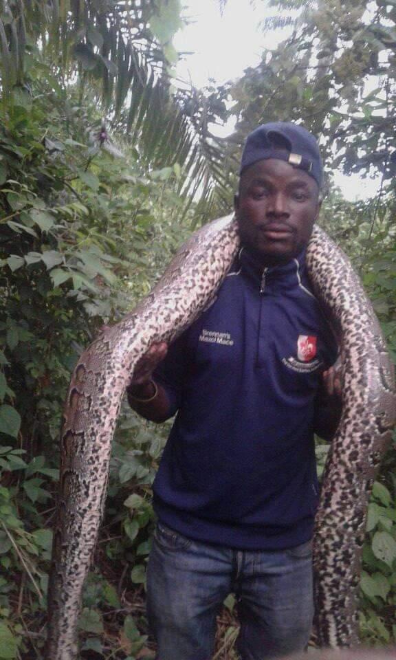 python-in-osogbo
