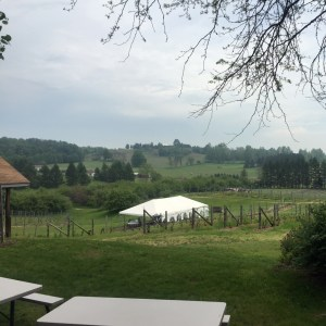 Big Little Wines Suttons Bay