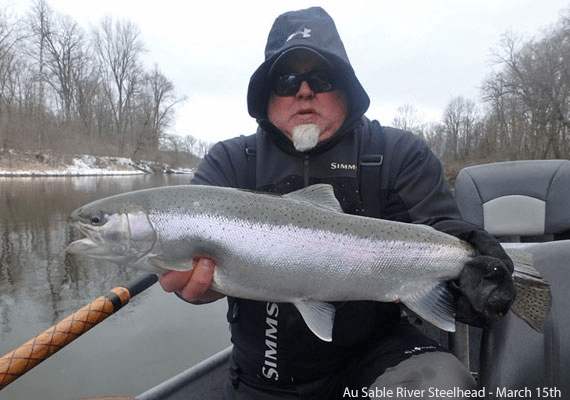 Winter Steelhead from the Lower Au Sable River