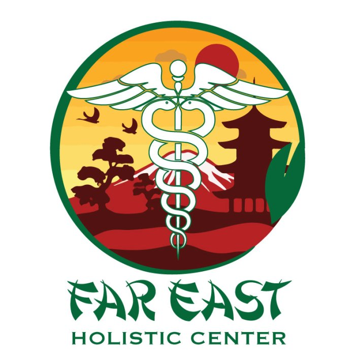 Far East Holistic Center Logo by Michigan Business Designs