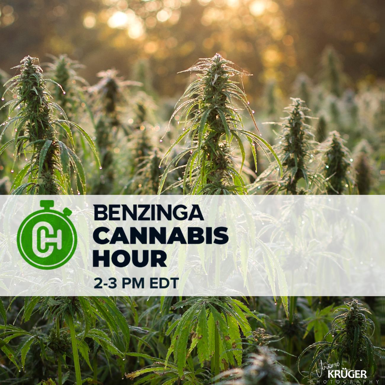 Benzinga Cannabis Happy Hour Thursdays