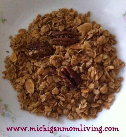 https://i2.wp.com/michiganmamanews.com/wp-content/uploads/2014/05/granola.jpg?resize=442%2C481