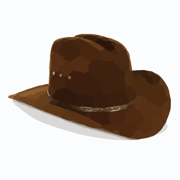 cowboy-295091_640
