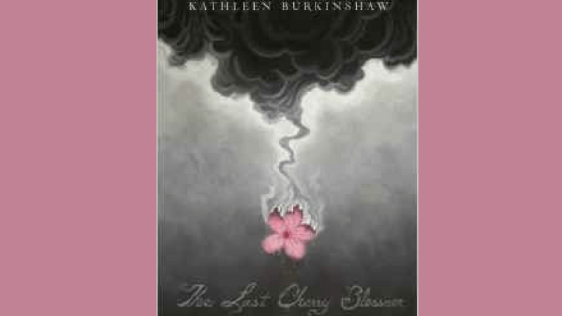 The Last Cherry Blossom {Book Review}