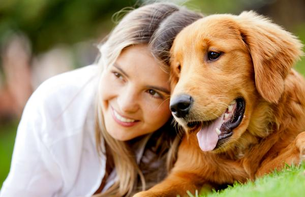 New for Dog's Digestive Health: Liquid Longevity