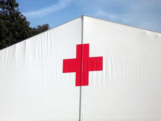 red-cross-19494_640