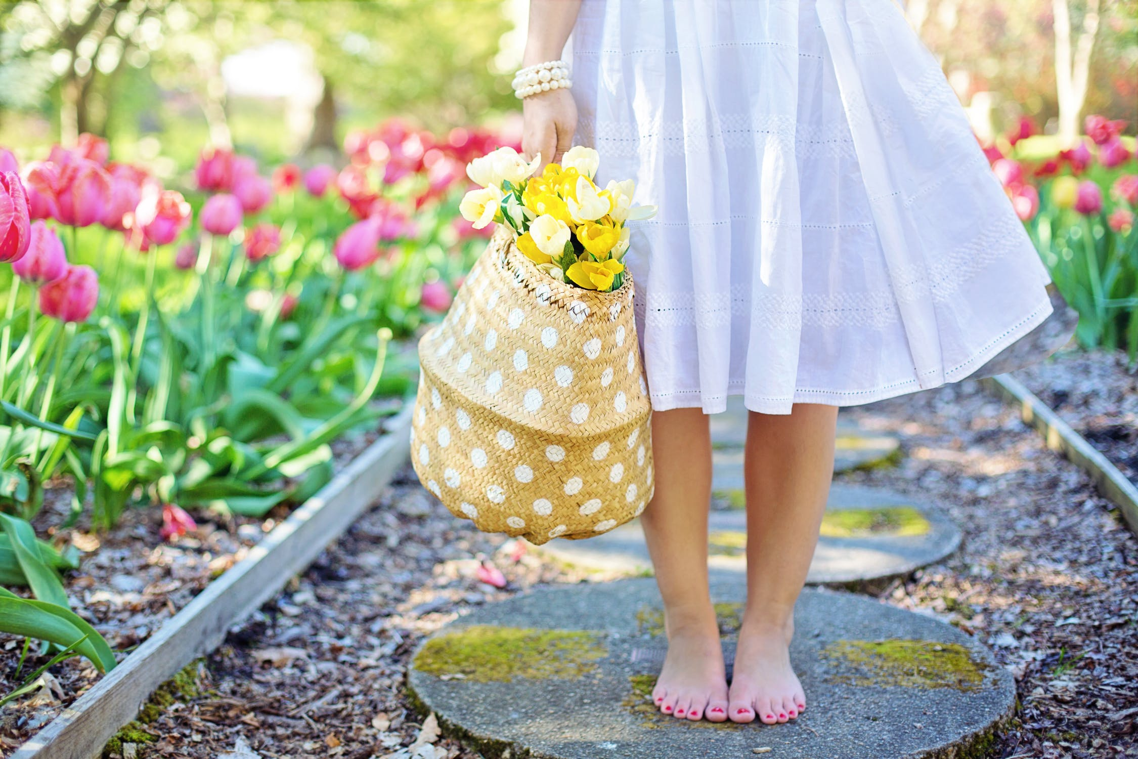 7 Tips for Keeping Your Home and Garden Clean and Eco-Friendly {Guest Blogger}