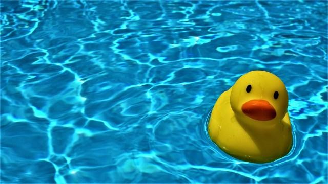 pool-5173672_1280