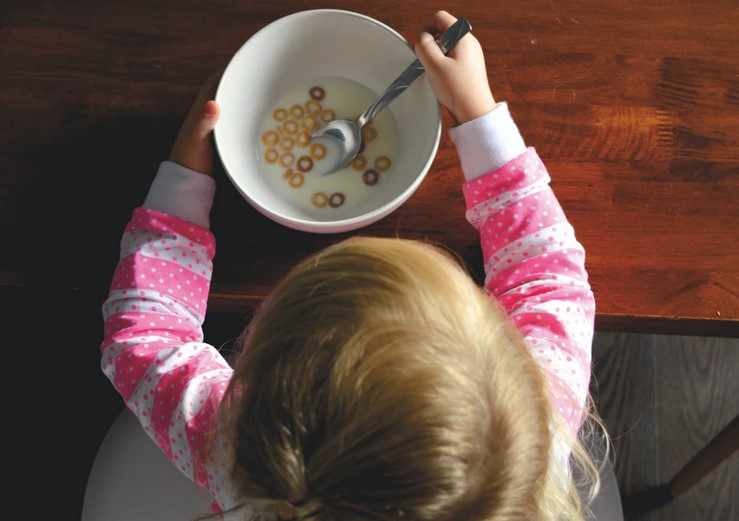 4 Lunch Ideas for Kids That Are Picky Eaters