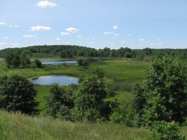 MNA completed a series of land acquisition projects to help expand the protected areas at three of the 14 nature sanctuaries within the Jackson Interlobate. [Photo: Big Valley Nature Sanctuary]