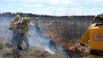 MNA's burn crew conducted several prescribed burns in order to maintain sensitive habitats around the state