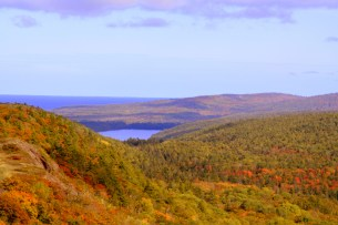 MNA purchased a 77-acre addition to James H. Klipfel Memorial Nature Sanctuary on Brockway Mountain thanks to generous support from members and a matching grant from Donald and Karen Stearns. [Photo: J. Haara]