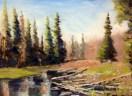 Logs & Stream