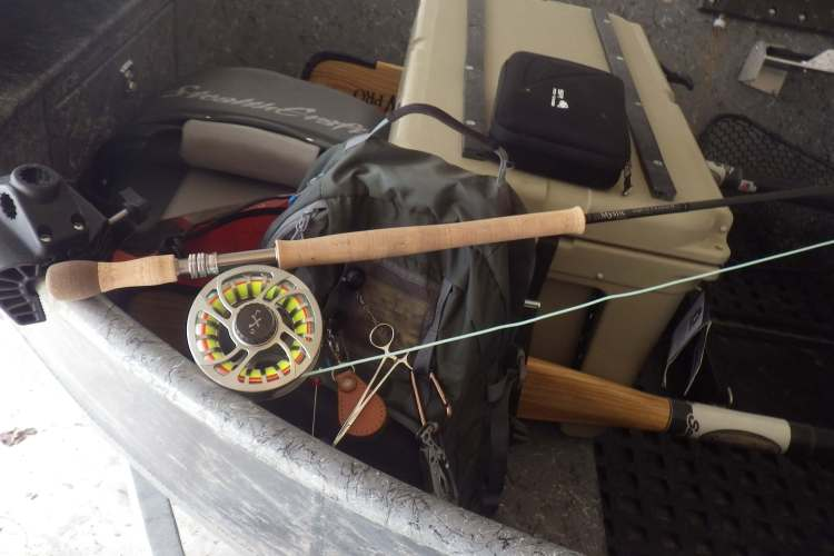 mystic switch rod 8wt