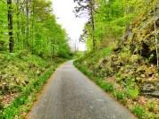 Drogi rowerowe w Szwecji nawet w lesie są oświetlone.