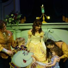 belle meets the official chip