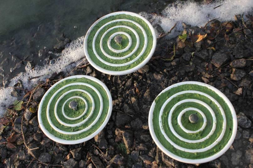 Algae_capacitors_3_1
