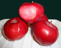 Unnamed Totally Red Apple