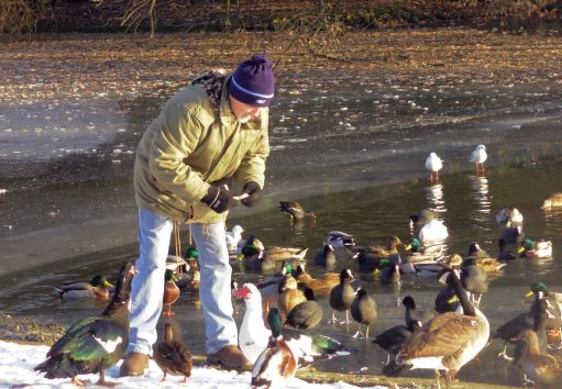 me-feedin-ducks