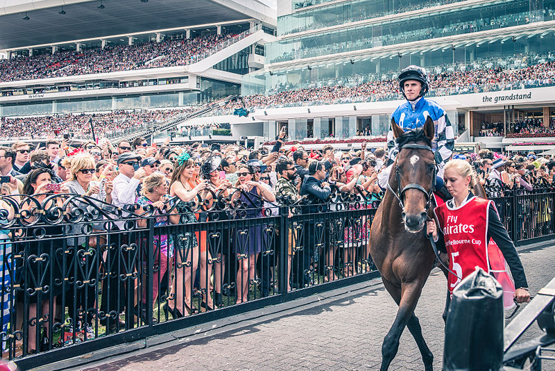 Godolphin runner Cross Counter wins 2018 Melbourne Cup