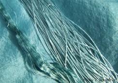 Pastel du jardin sur soie