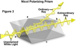 Molecular Expressions Microscopy Primer: Specialized Microscopy Techniques  Polarized Light
