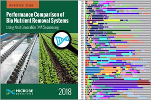 BNR Biological Nutrient Removal Microbiome