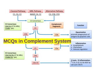 MCQs Complement System