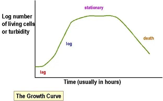 Bacterial growh Curve