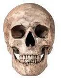 Skull meningitis