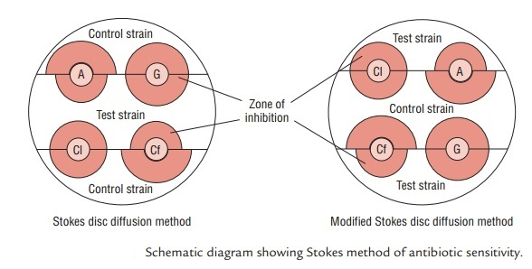Stokes disc diffusion method