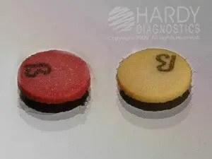 Fig: Nitrocefin test result (Left Positive), Right (Negative).