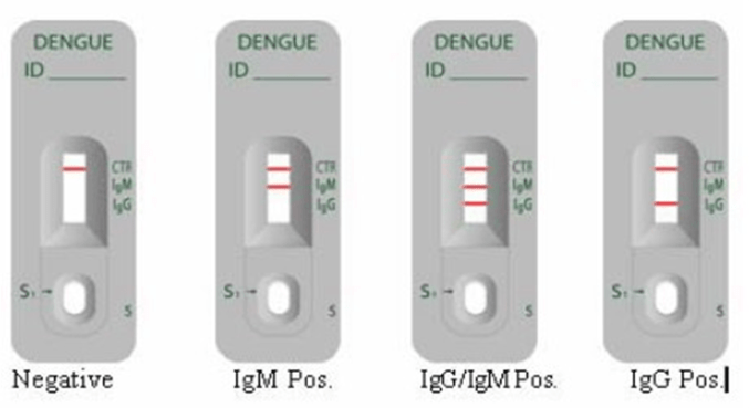 Rapid ICT based Test for the diagnosis of Dengue Infection