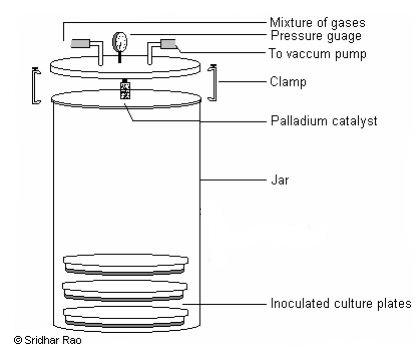 McIntosh Fildes Anaerobic Jar mcintosh and fildes' anaerobic jar principle, procedure and uses