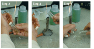 Pouring the moten agar medium