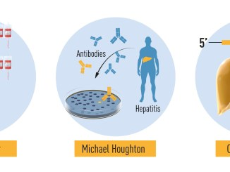 Nobel prize 2020 for discovery of Hepatitis C virus