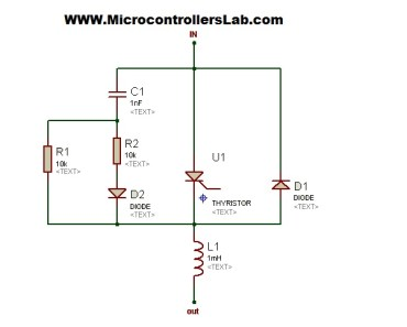 polarized snubber circuits