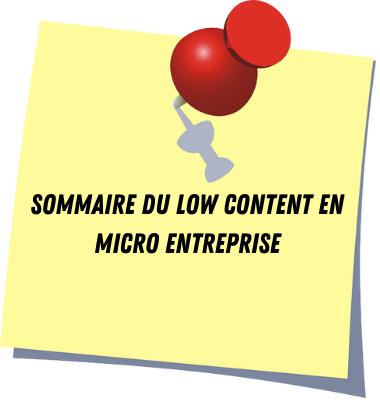 Sommaire du guide du low content KDP Amazon en micro entreprise