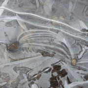 patterns in ice