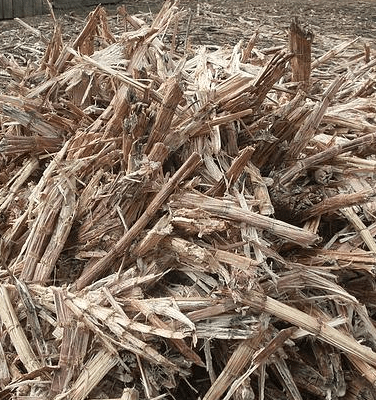 biofuel from bagasse