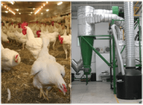 checken waste to fertilizer