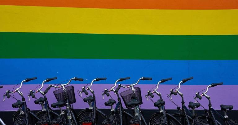 Rainbow Flag with Bikes