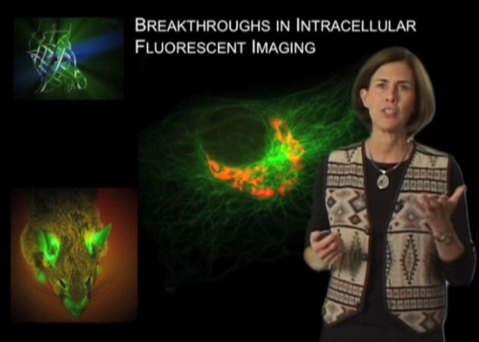 Jennifer Lippincott-Schwartz excellent talk on November 8th