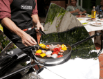 solsource parabolic stove