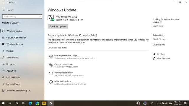 Windows 10 version 20H2 October 2020 feature update Microsoft